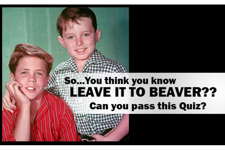 The ULTIMATE Leave It To Beaver QUIZ:  Think you can pass this one??